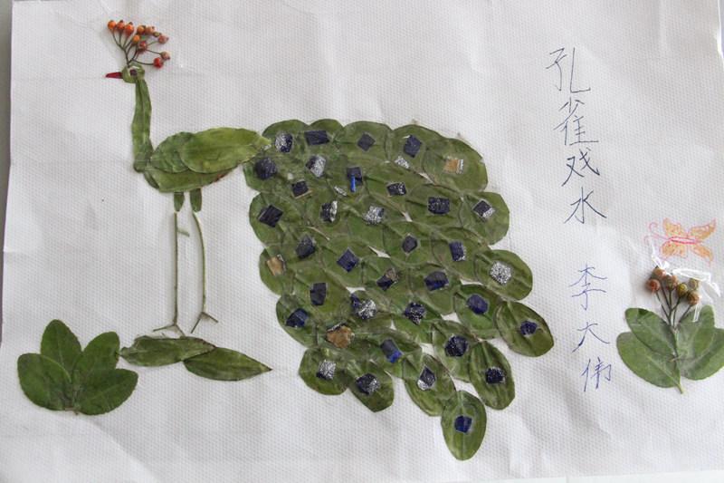 人民网济南10月29日电 2014年10月下旬,济南市姚家小学举办了一场特殊的树叶画制作比赛。同学们选择收集自己喜欢的树叶制作成一幅幅精美的图画,他们以人物、动物、山水、建筑、植物、梅、竹、荷花等为题材制作树叶画,体现出当代社会的繁荣、和谐等积极向上的思想。 本次比赛丰富了学校少年儿童的课余文化生活,引导学生们热爱自然、热爱生活、热爱劳动,增强学生的环保、和谐意识,提高他们动手、动脑能力。同时,活动本身的趣味性也广受欢迎。姚家小学的学生们度过了有趣又有意义的一段比赛时光。(付忠军)