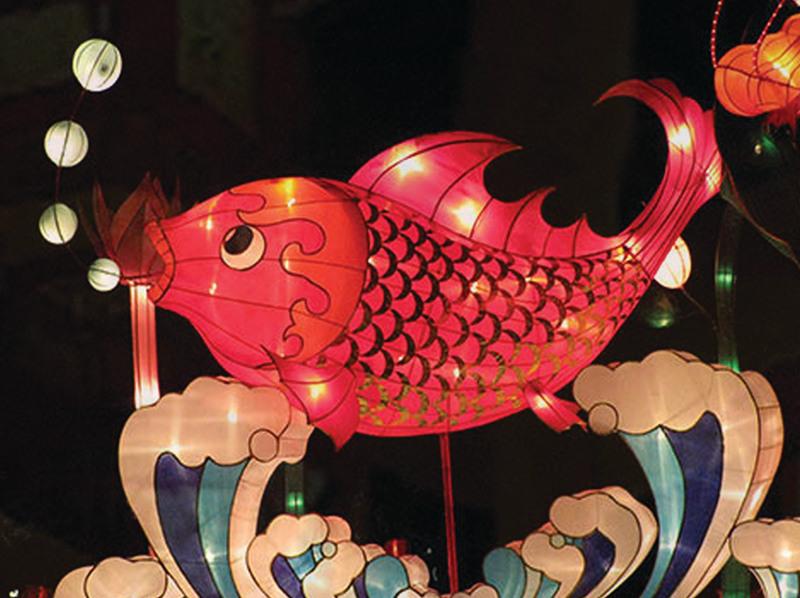 花灯扎制成壁虎,蝎子,螃蟹,蝈蝈,青蛙等8种动物形状,由16个少年儿童