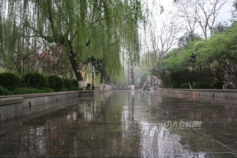 春天里的第一场雨