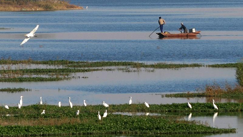 济南章丘绣源河风景区获评全球低碳生态景区