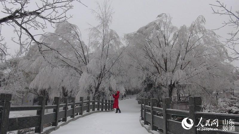 济南今冬首场雪 景区雪景娇美如画(组图)