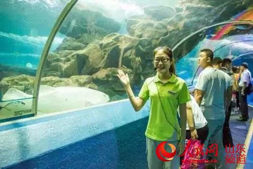 青岛海底世界 魔幻海洋快乐畅享