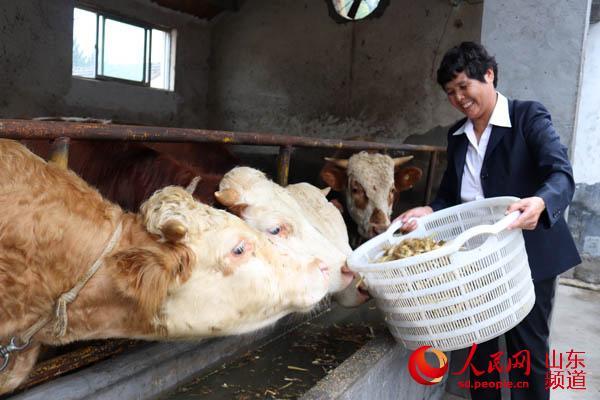 米培莲到奶牛场了解养殖情况。(摄影 毛杰)
