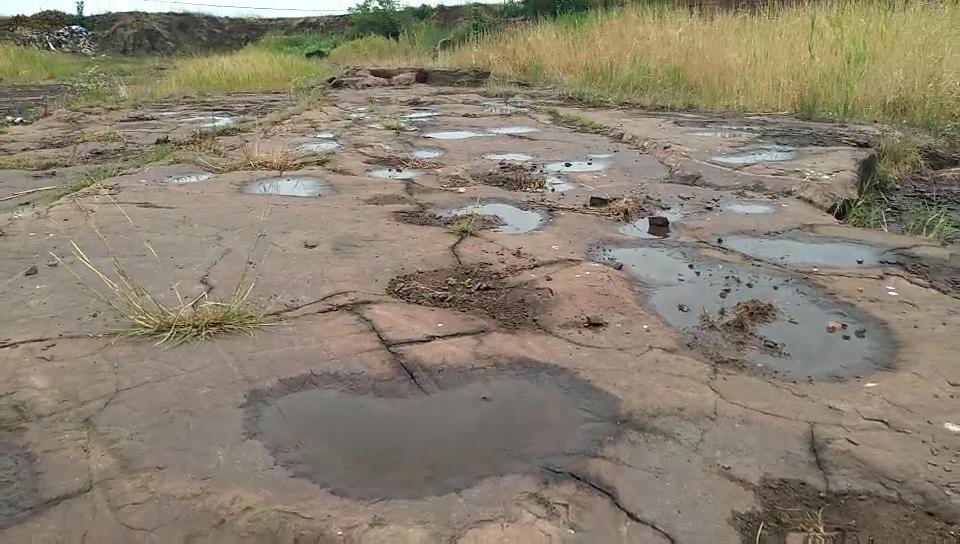 山东发现世界首例群体小型恐爪龙类足迹