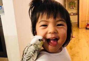 BO妞伸舌头想舔小鸟 修杰楷:她用吃探索世界