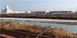 山东潍坊市围滩河撒药治污 表面整改