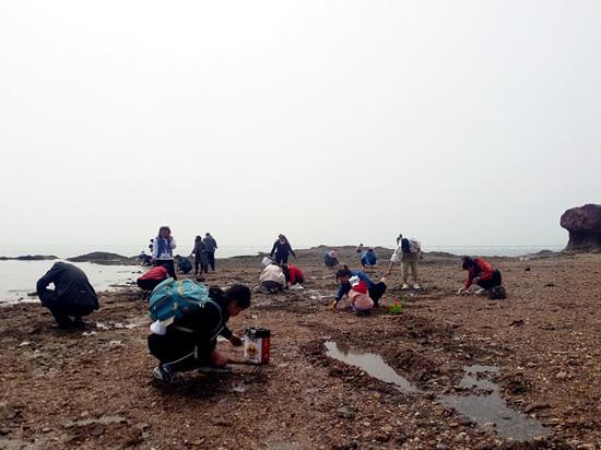 第十六屆青島紅島蛤蜊節開幕全方位旅游體驗歡樂來襲