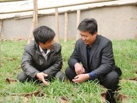 卞桥镇人口_平邑卞桥镇一基地带动近700贫困人口就地脱贫