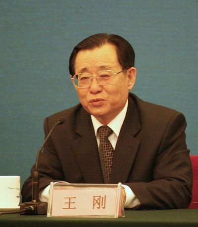 王刚出席山东半岛蓝色经济区建设恳谈会
